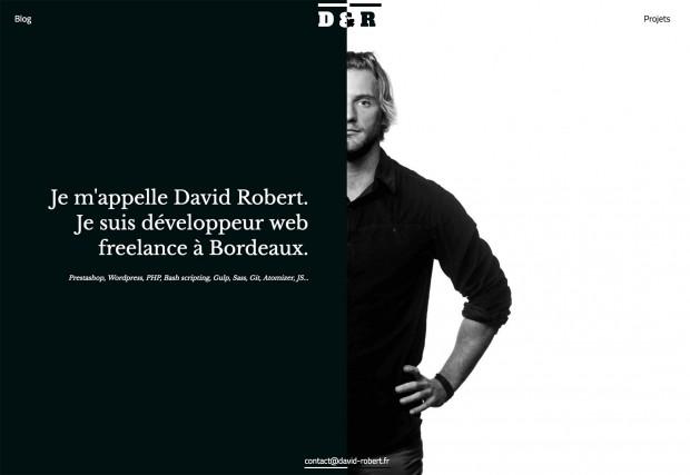 david-robert-620x427