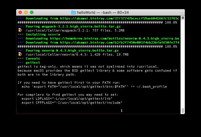 macでhomebrewを使って、Pythonで利用するためにneovimをインストールして起動した状態。